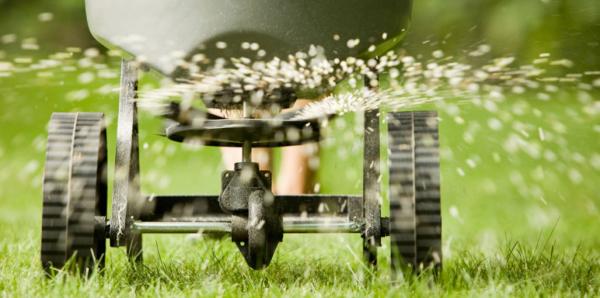 Ramos-Landscaping-Grasss-Seeding