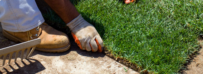 Ramos Landscaping Professional Landscaping Services
