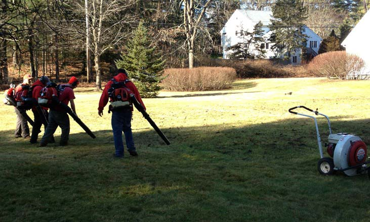 spring-clean-up-fall-clean-up-yard clean-up - Spring Clean Up - Ramos Landscaping -Professional Landscaping Services
